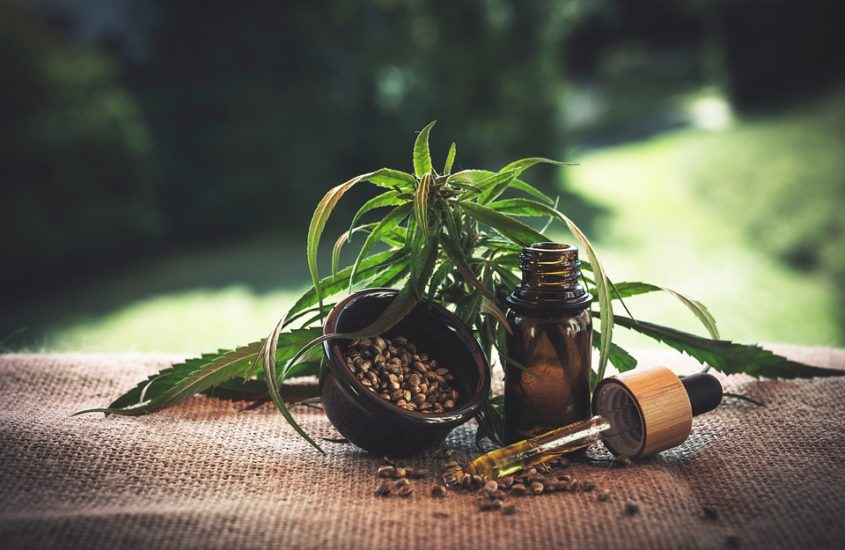 Cannabis médical : la première expérimentation aura lieu dès 2020 en France