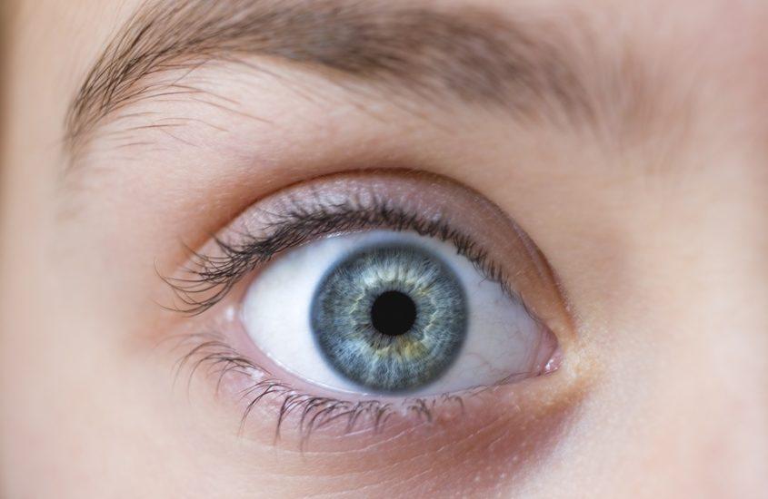 Prêt d'ordinateur à commande oculaire